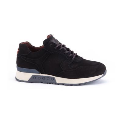 -- Sneakers Greve