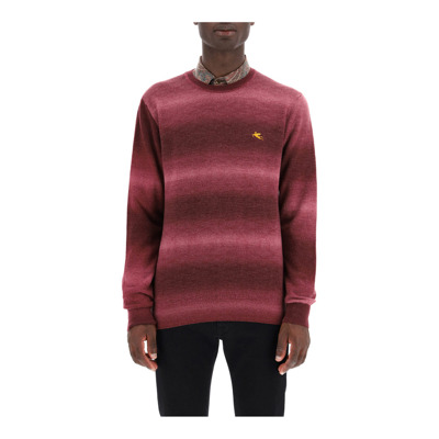 shaded sweater with logo embroidery Etro