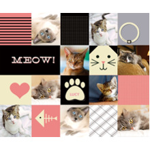 Pets Sherpa Blanket, Gift -Cat Collage