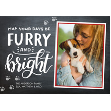 Christmas Photo Cards 5x7 Cards, Premium Cardstock 120lb with Scalloped Corners, Card & Stationery -Christmas Furry Bright Paw Prints
