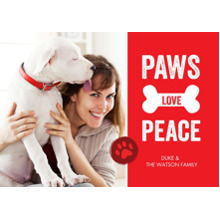 Christmas Photo Cards 5x7 Cards, Premium Cardstock 120lb with Elegant Corners, Card & Stationery -Holiday Paw Peace Print