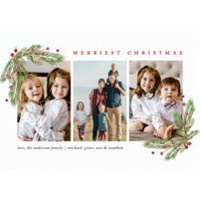 Christmas Photo Cards 5x7 Cards, Premium Cardstock 120lb with Elegant Corners, Card & Stationery -Christmas Evergreen Berries