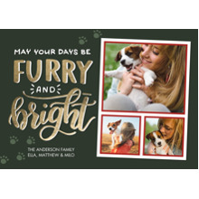 Christmas Photo Cards 5x7 Cards, Premium Cardstock 120lb with Rounded Corners, Card & Stationery -Christmas Furry Bright Paw Prints
