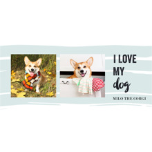 Pets Commuter Mug, Gift -Puppy Love