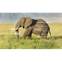 Associations & Organizations 2x3.5 Business Cards - Double Sided , Card & Stationery -Wild Life Animals