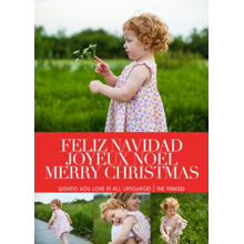 Christmas Photo Cards 5x7 Cards, Premium Cardstock 120lb with Rounded Corners, Card & Stationery -Love Languages by Posh Paper