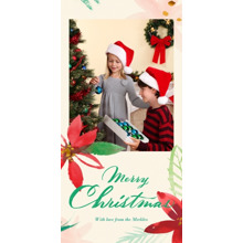 Christmas Photo Cards 4x8 Flat Card Set, 85lb, Card & Stationery -Watercolor Poinsettias