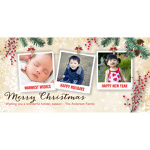 Christmas Photo Cards 4x8 Flat Card Set, 85lb, Card & Stationery -Christmas Berries Snapshots