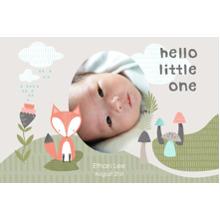 Baby + Kids 12x18 Poster, Home Decor -Little Fox