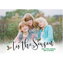 Christmas Photo Cards 5x7 Cards, Premium Cardstock 120lb with Elegant Corners, Card & Stationery -Holly And Berries