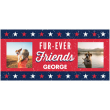 Pets 15 oz. Mug, Gift -Patriotic Pet