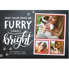 Christmas Photo Cards 5x7 Cards, Premium Cardstock 120lb with Elegant Corners, Card & Stationery -Christmas Furry Bright Paw Prints