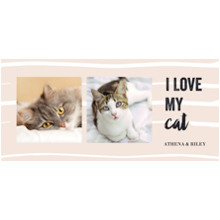 Pets 11oz Hidden Picture Mug, Gift -Kitty Love