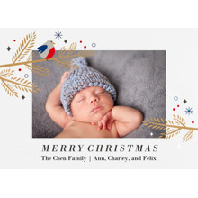 Christmas Photo Cards 5x7 Cards, Premium Cardstock 120lb with Rounded Corners, Card & Stationery -Christmas Robin