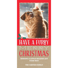 Christmas Photo Cards 4x8 Flat Card Set, 85lb, Card & Stationery -Furry Merry Christmas