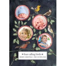 Christmas Photo Cards 5x7 Cards, Premium Cardstock 120lb with Rounded Corners, Card & Stationery -Four Calling Birds