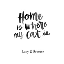 Non-Photo 12x18 Poster, Home Decor -Home Cat