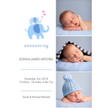 Baby Announcements 5x7 Cards, Premium Cardstock 120lb with Elegant Corners, Card & Stationery -Baby Elelphants & Hearts Portrait