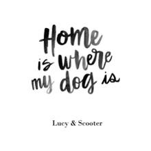 Non-Photo 11x14 Peel, Stick & Reuse, Home Decor -Home Dog