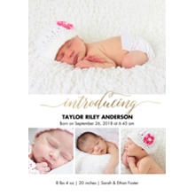 Baby Boy Announcements 5x7 Cards, Standard Cardstock 85lb, Card & Stationery -Baby Gold Introducing