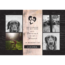 Pet Framed Canvas Print, Chocolate, 20x30, Home Decor -The Good Pet