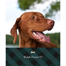 Pet Canvas Print, 11x14, Home Decor -Plaid Pet
