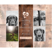 Pet Canvas Print, 20x24, Home Decor -The Good Dog