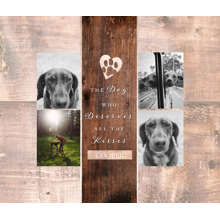 Pet Canvas Print, 8x10, Home Decor -The Good Dog