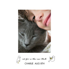 Pets Fleece Blanket, 60x80, Gift -Hipster Cat