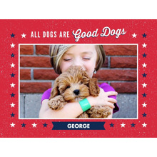 Pets Plush Fleece Blanket, 60x80, Gift -Patriotic Pet