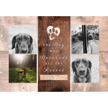 Pet Framed Canvas Print, Chocolate, 20x30, Home Decor -The Good Dog