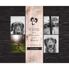 Pet Framed Canvas Print, Black, 11x14, Home Decor -The Good Pet