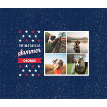 Pet Canvas Print, 8x10, Home Decor -Patriotic Pet