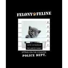Pet Framed Canvas Print, Black, 11x14, Home Decor -Felony Feline