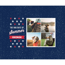 Pet Framed Canvas Print, Chocolate, 11x14, Home Decor -Patriotic Pet