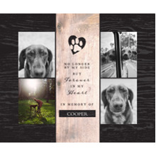 Pet Canvas Print, 16x20, Home Decor -The Good Pet