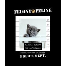 Pet Canvas Print, 20x24, Home Decor -Felony Feline