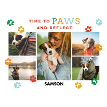 Pets Fleece Blanket, 60x80, Gift -Well Have The Woofles