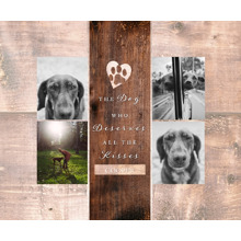 Pet Framed Canvas Print, Chocolate, 11x14, Home Decor -The Good Dog