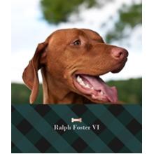Pet Canvas Print, 8x10, Home Decor -Plaid Pet