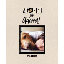 Pet Framed Canvas Print, Chocolate, 11x14, Home Decor -Pet Rescue