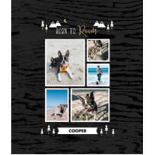 Pet Framed Canvas Print, Black, 20x24, Home Decor -Adventure Bud