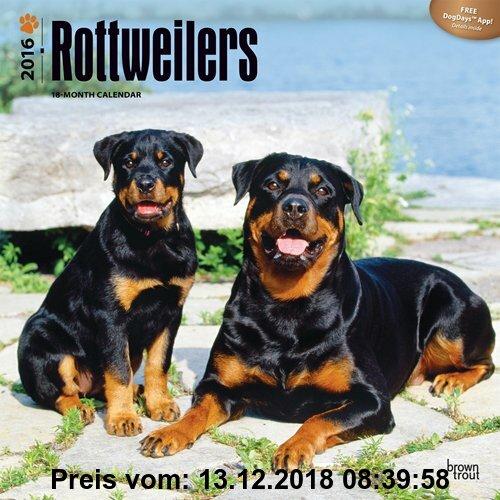 Gebr. - Rottweilers 2016 - Rottweiler - 18-Monatskalender mit freier DogDays-App: Original BrownTrout-Kalender [Mehrsprachig] [Kalender] (Wall-Kalende