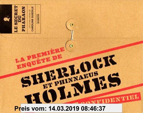 Gebr. - Première enquête de Sherlock et Phinnaeus Holmes : Confidentiel