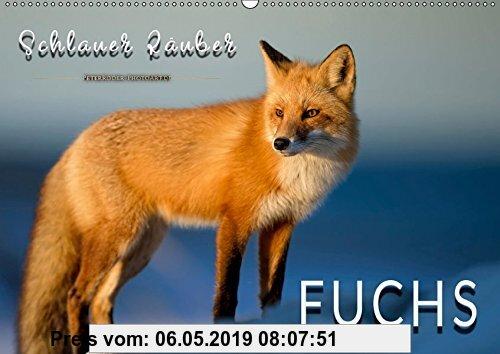 Gebr. - Fuchs - schlauer Räuber (Wandkalender 2019 DIN A2 quer): Eindrucksvolle Bilder der scheuen Tiere. (Monatskalender, 14 Seiten ) (CALVENDO Tiere