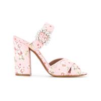 Tabitha Simmons Reyner sandals - Rose