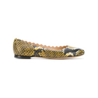 Chlo Lauren ballerina shoes - Yellow