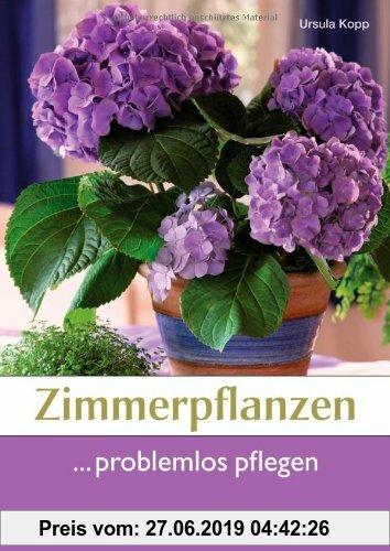Gebr. - Zimmerpflanzen problemlos pflegen