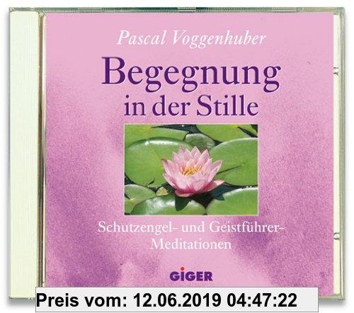 Gebr. - Begegnung in der Stille: Schutzengel- und Geistführer Meditationen