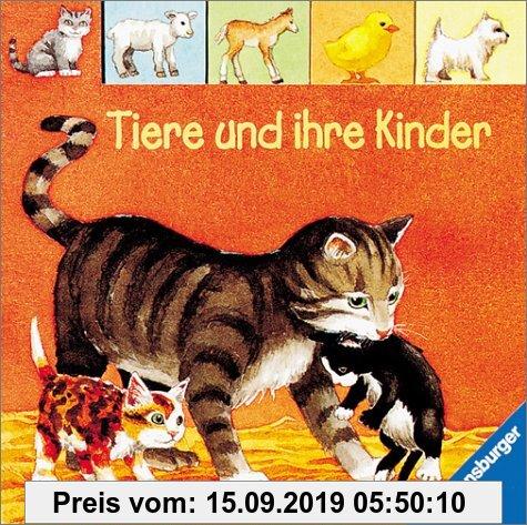 Gebr. - Verkaufs-Kassette Vorschulspaß mit Fridolin Frosch: Tiere und ihre Kinder